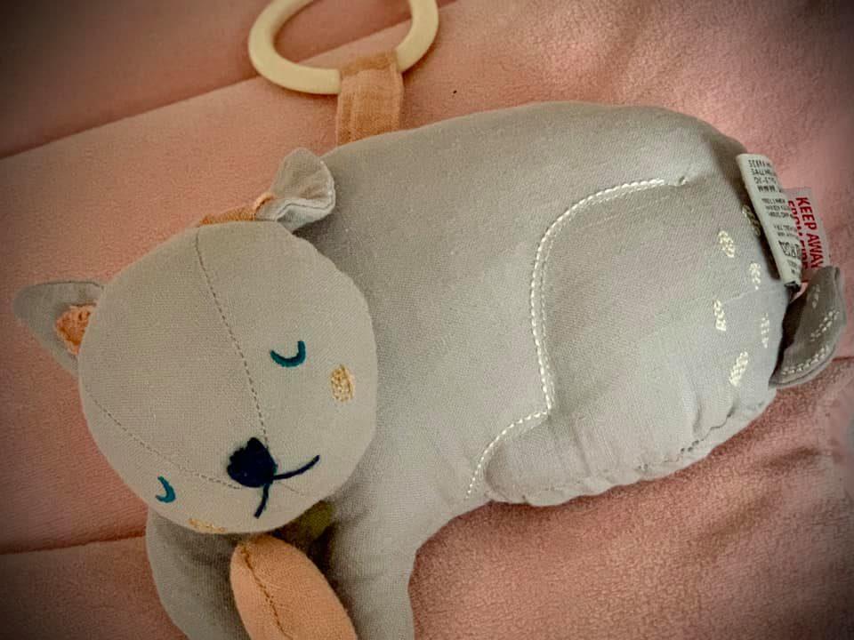 lucruri de luat în calcul, când alegem jucăriile bebelușului. Cum ne asigurăm că sunt potrivite și îl ajută în dezvoltare.